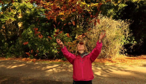 Feel good at Tatton Park this Autumn
