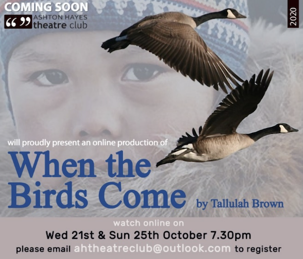 When The Birds Come, by Tallulah Brown